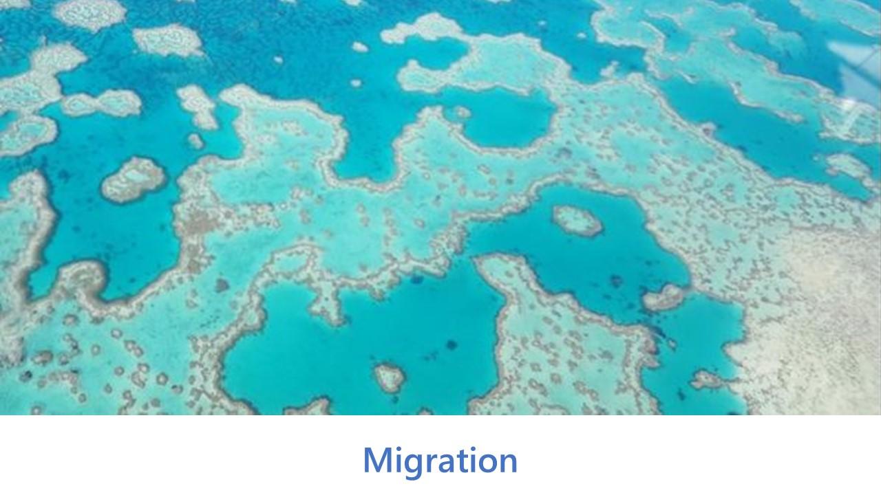 Migration Services